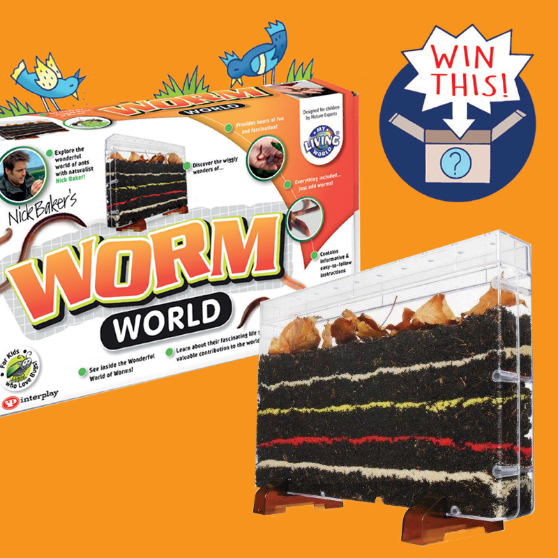 Win Nick Baker Worm World