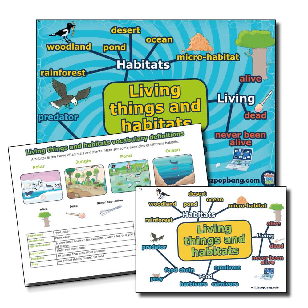 Year 2 Living things and habitats vocabulary