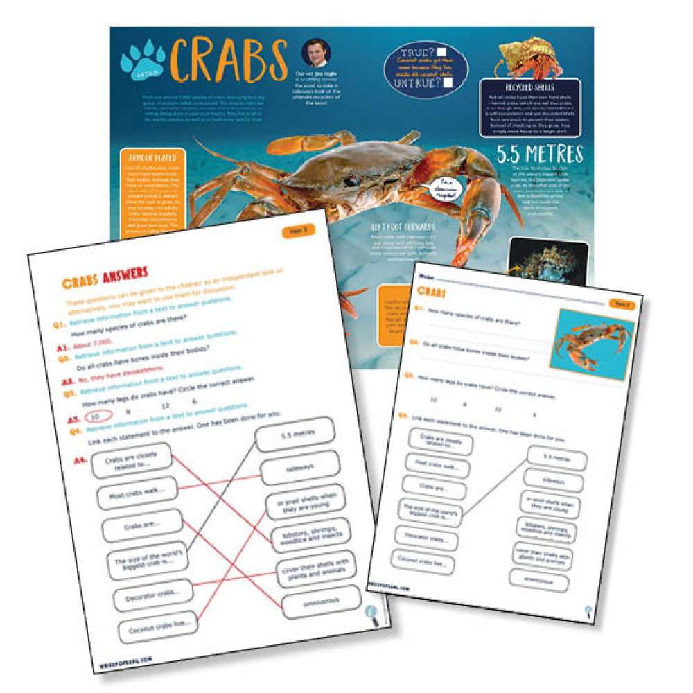 A non-chronological report on crabs