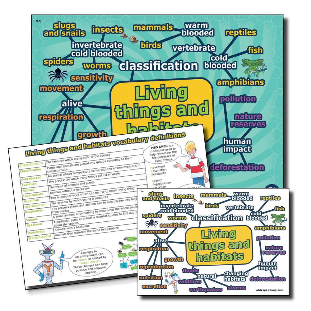 Year 4 Living things and habitats vocabulary