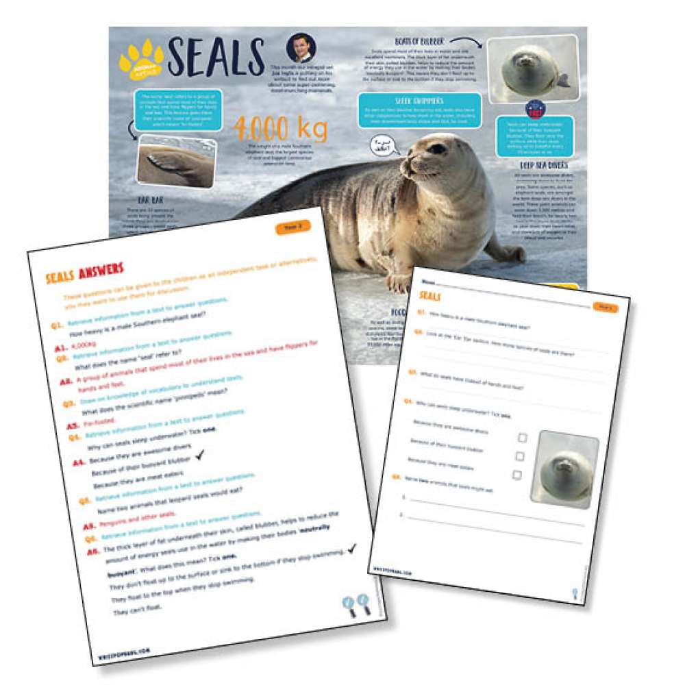 A non-chronological report on seals
