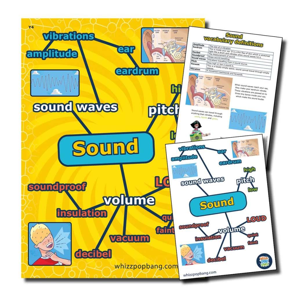 Year 4 Sound vocabulary
