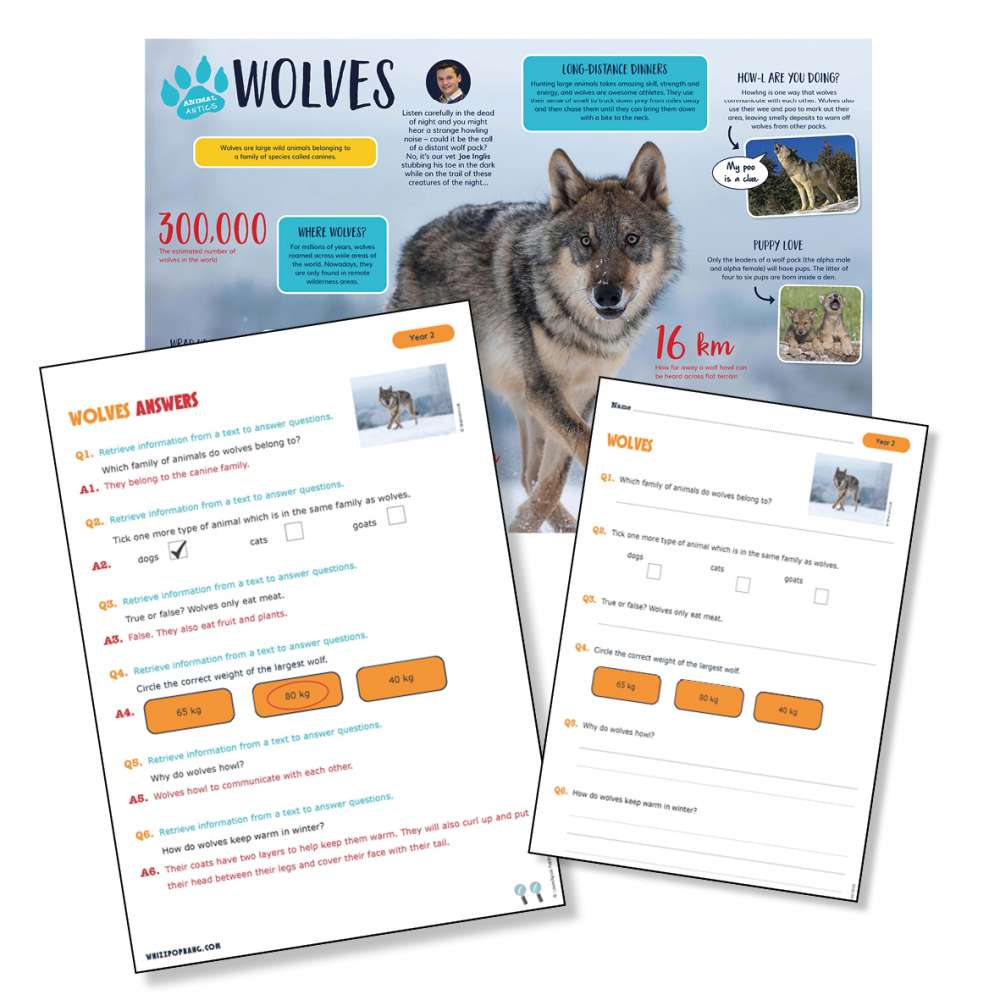 A non-chronological report on wolves