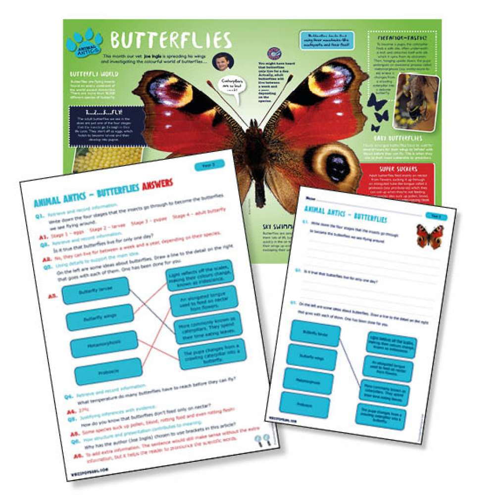 A non chronological report on butterflies