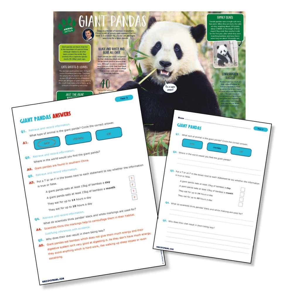 A non-chronological report on giant pandas