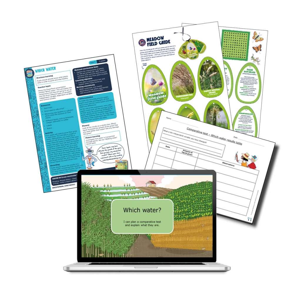 Plants - Grasses investigation