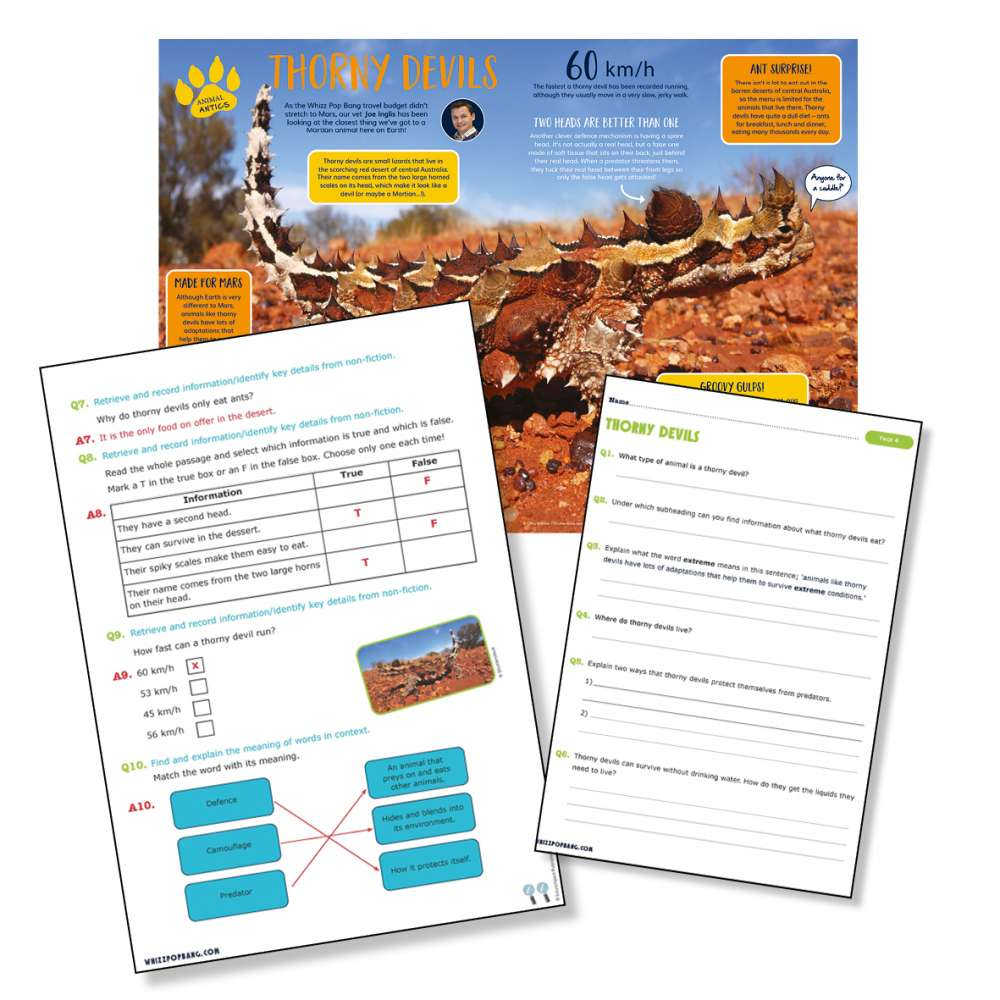 A non-chronological report on thorny devils