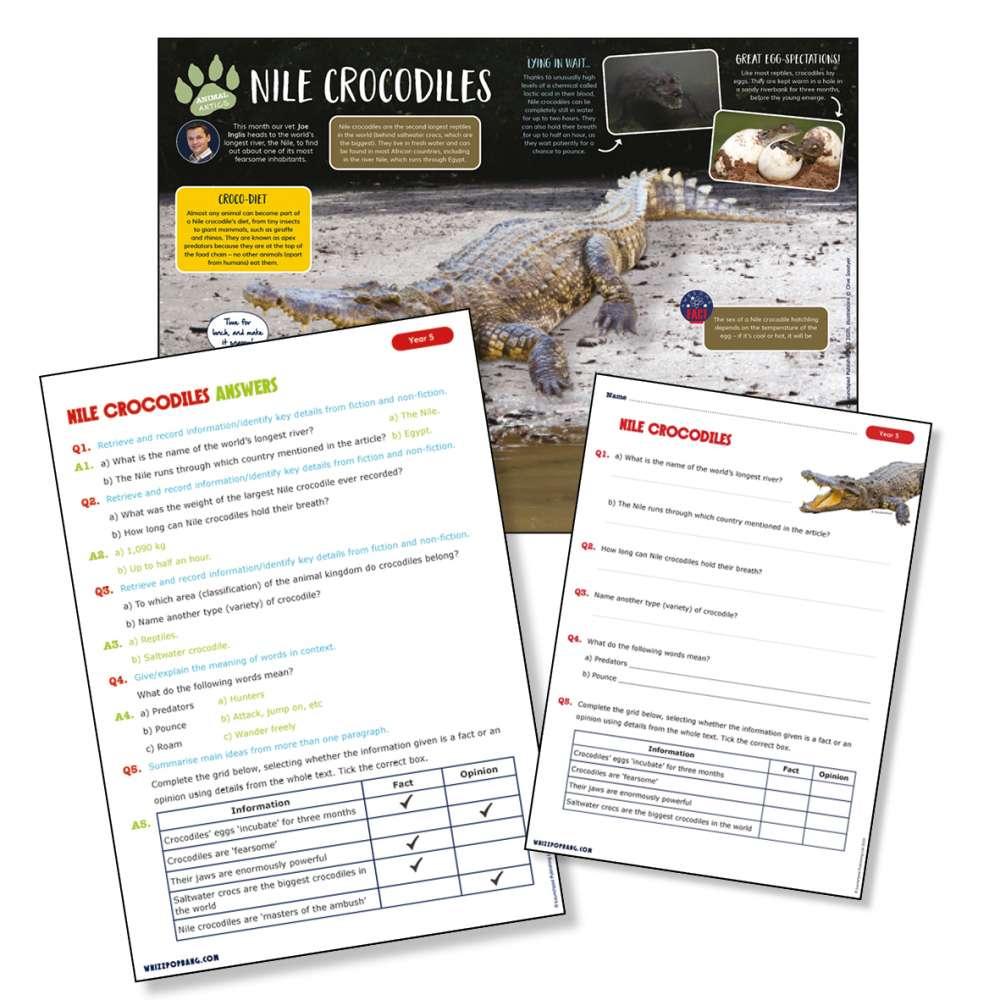 A non-chronological report on Nile crocodiles