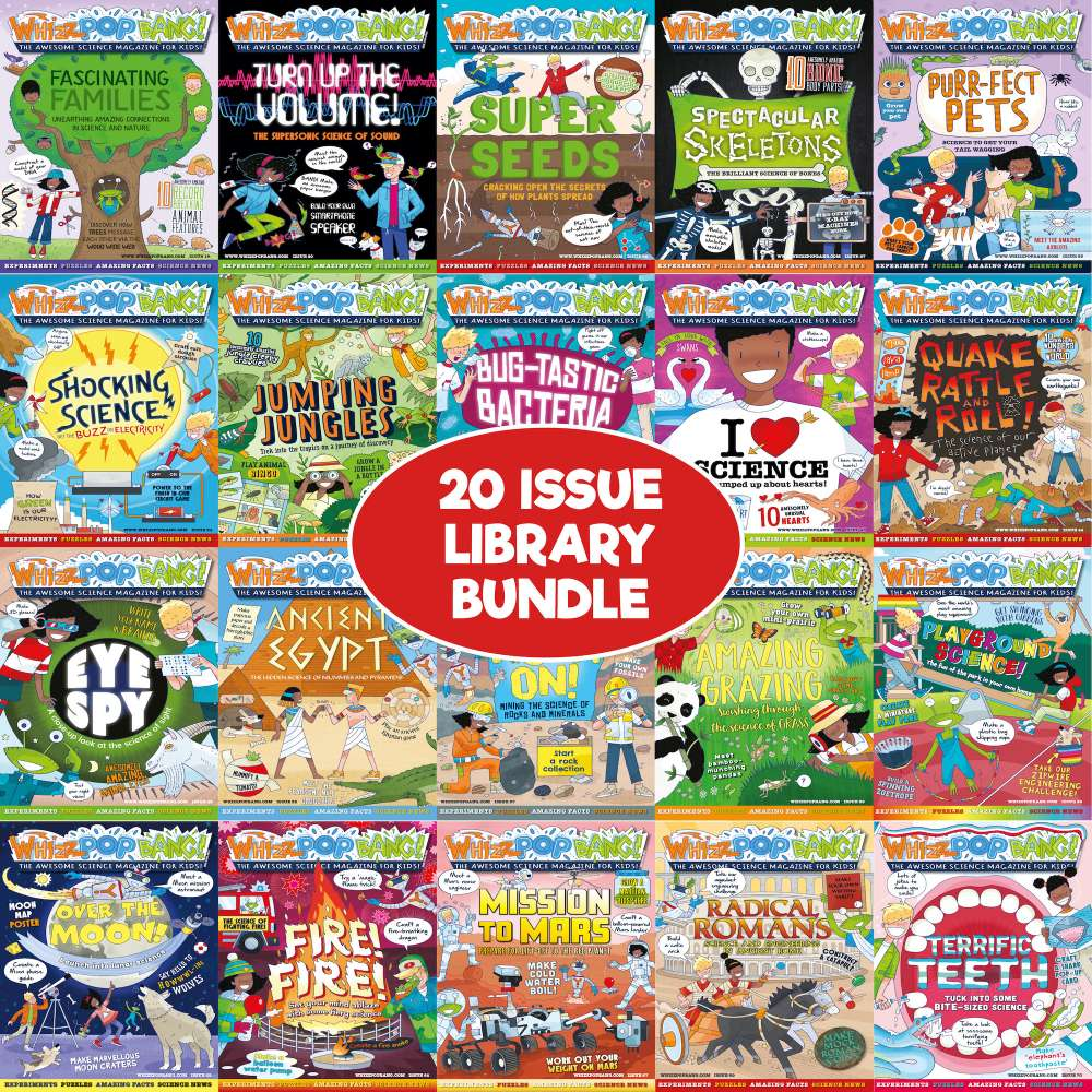 20-issue library bundle image 1