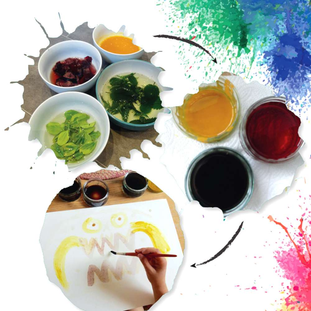Science for the senses bundle image 6
