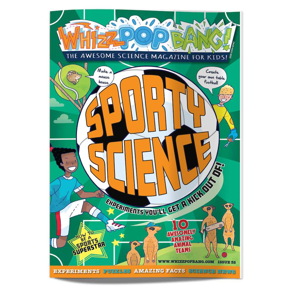 Summer science bundle image 3