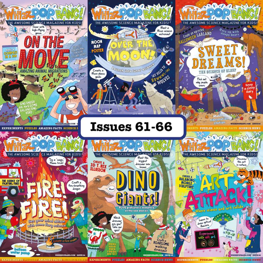 Bundle of 6 back issues image 1