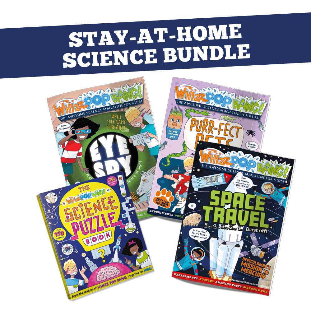Stay-At-Home Science Bundle image 1