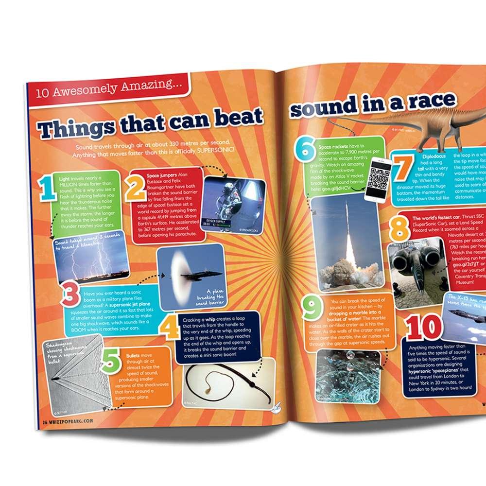 Science for the senses bundle image 5