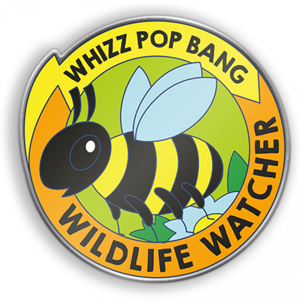 Badge postage & packing image 1