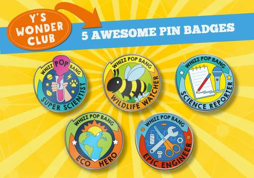 Epic pin badges for your child to earn